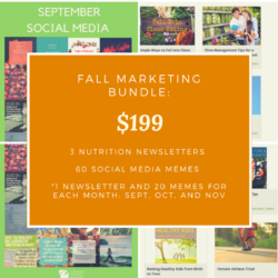 3 Month Nutrition and Wellness Marketing Bundle